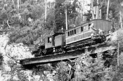 The Climax locomotive hauls a hired TGR B class carriage into the bush and toward the logging areas