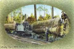 A hand coloured version of the often used photograph showing the Vertical Boiler loco in use in the