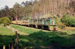 852 & 875 lead loaded log train 5124 near National Park, October 1991