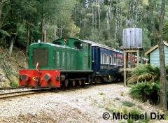 West Coast Wilderness Railway loco D2 at Lower Landing station. October 2003