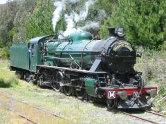 Tasmanian Transport Museum locomotive M5 rests at National Park after arrival with a charter train,