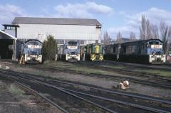 In the late 1980s the Launceston diesel workshops often had the appearance of a Queensland Railways